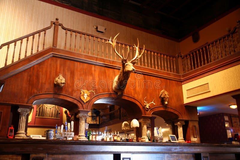 Download A stylish night bar stock image. Image of deer, bartender - 25197247