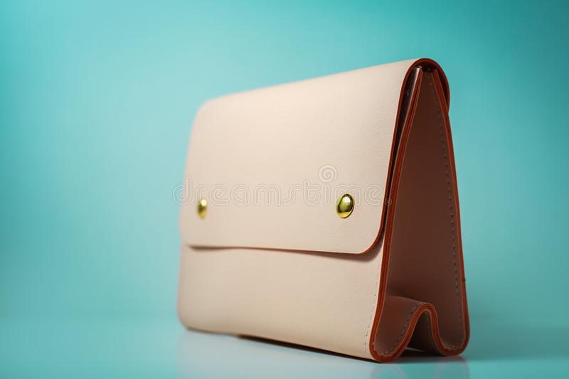 Trendy fashion Handbag Clutch royalty free stock photos
