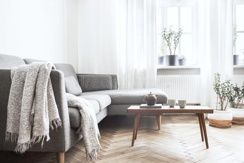 Stylish scandinavian interior of living room with small design table ,sofa, lamp and shelfs. White walls, plants on the windowsill royalty free stock image