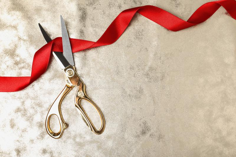 Stylish scissors and red ribbon on color background, flat lay. Ceremonial tape cutting. Stylish scissors and red ribbon on color background, flat lay with space royalty free stock photography