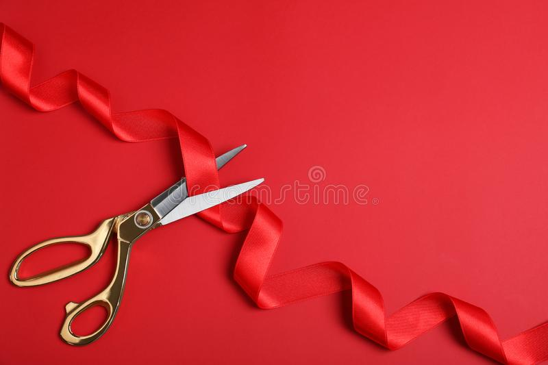 Stylish scissors and red ribbon on color background, flat lay. Ceremonial tape cutting. Stylish scissors and red ribbon on color background, flat lay with space royalty free stock images