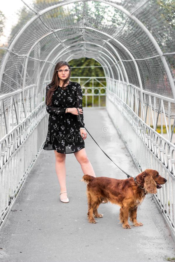 Stylish in short dress holding the collar purebred dog on bridge royalty free stock image