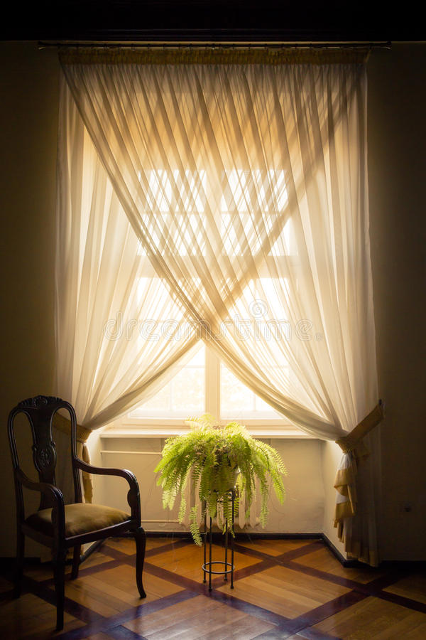 A stylish white window dressed with white curtains, a potted fer royalty free stock images