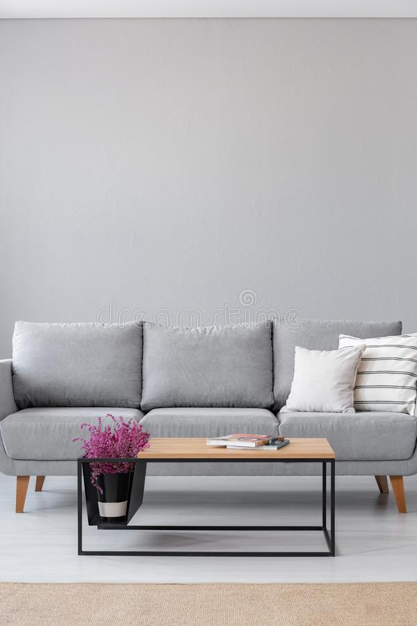 Stylish wooden coffee table with magazines and heather next to grey couch with white pillows. In industrial living room interior stock photography