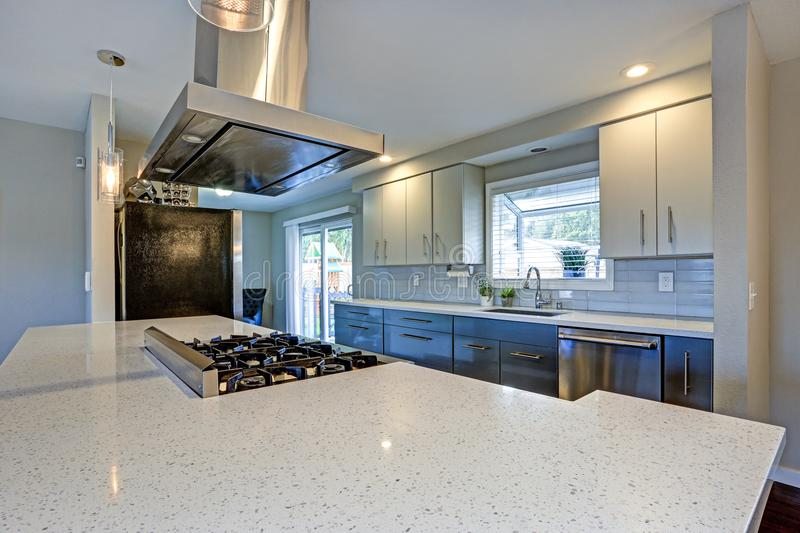 Stylishly updated kitchen with stainless steel appliances. Stylishly updated kitchen with quartz countertops and stainless steel appliances royalty free stock photography