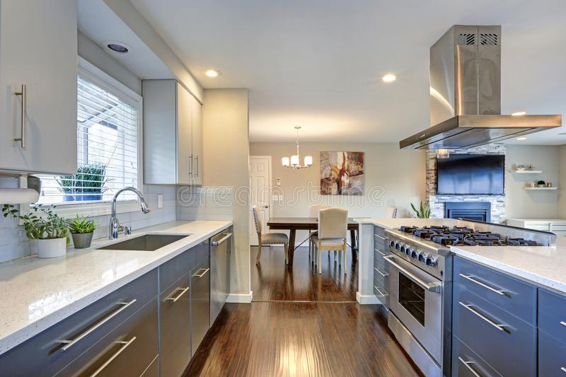 Stylishly updated kitchen with stainless steel appliances. Stylishly updated kitchen with quartz countertops and stainless steel appliances stock photos