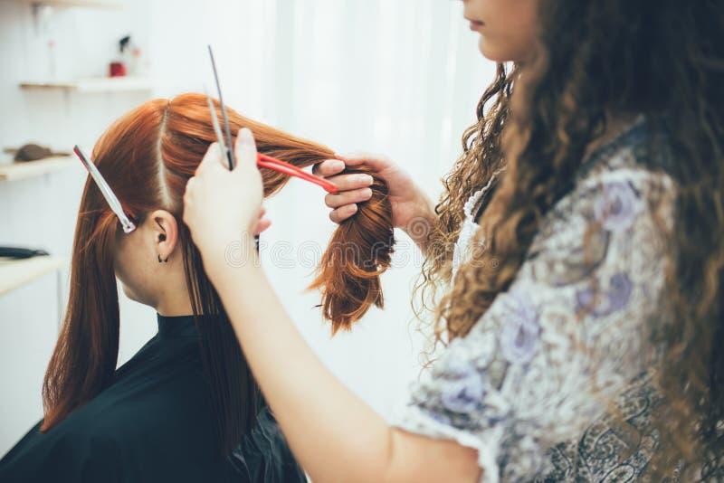 Stylista pracuje w piękno salonu, ostrzyżenia i włosy tytułowaniu, zdjęcia stock