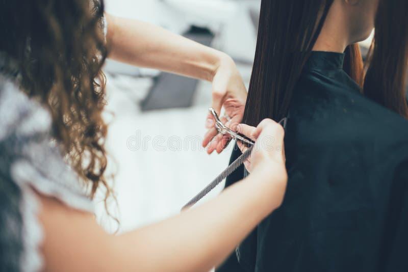 Stylista pracuje w piękno salonu, ostrzyżenia i włosy tytułowaniu, fotografia royalty free