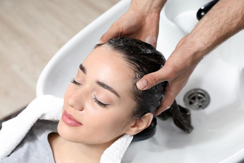 Stylisttvagningklients hår på vasken royaltyfri bild
