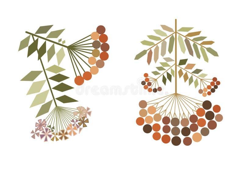 Stylization de las ramas del serbal del color ilustración del vector