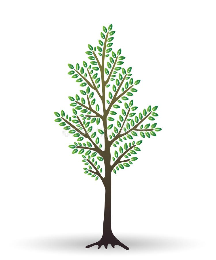 Stylized abstract young tree isolated on white background. Vector illustration. royalty free illustration