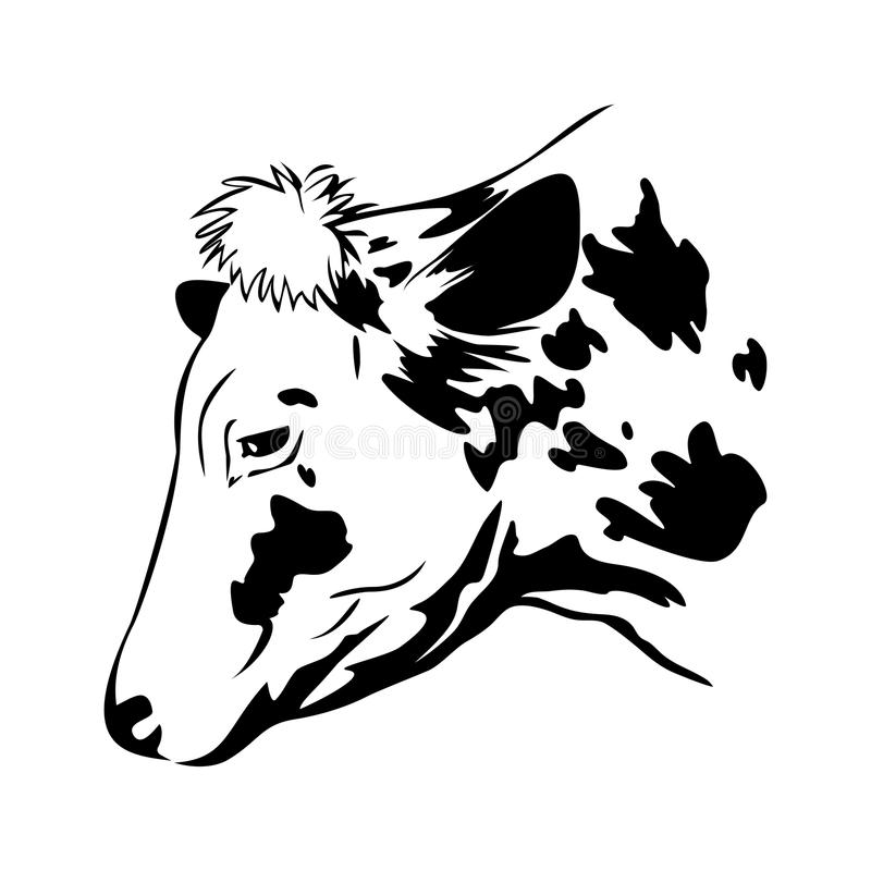 Stylized cow head, cow portrait. Farm animal, cattle royalty free illustration