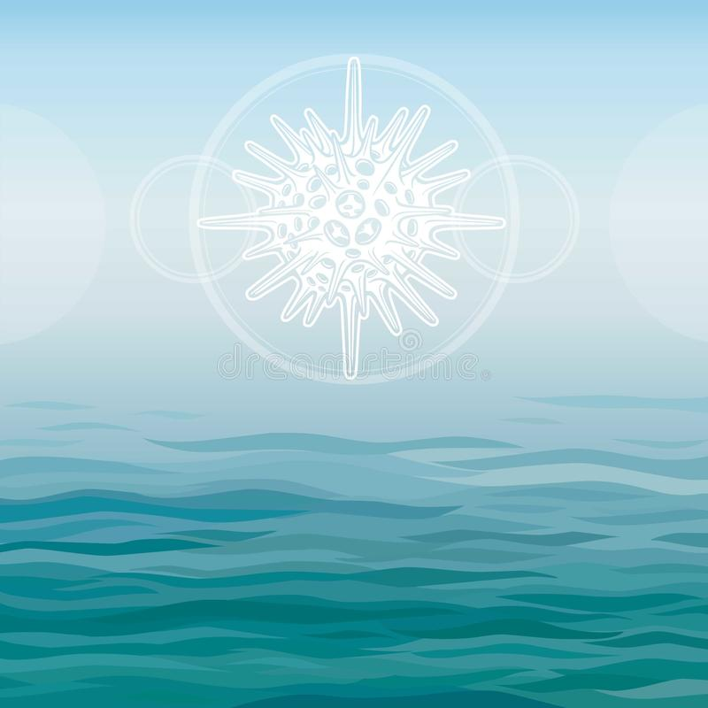 Stylized drawing of a radiolaria - the elementary marine organism. vector illustration