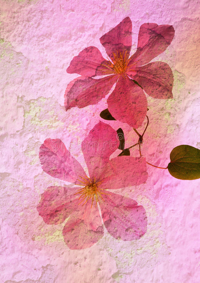 Stylized floral picture royalty free illustration