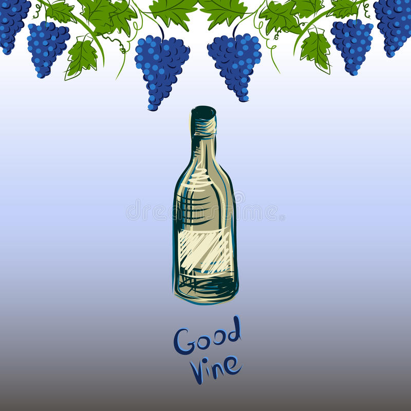 Stylized graphic image of a vine with grapes. stock photo