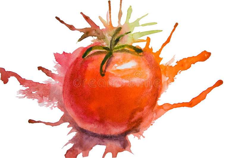 Stylized illustration of tomato. With clipping path stock illustration