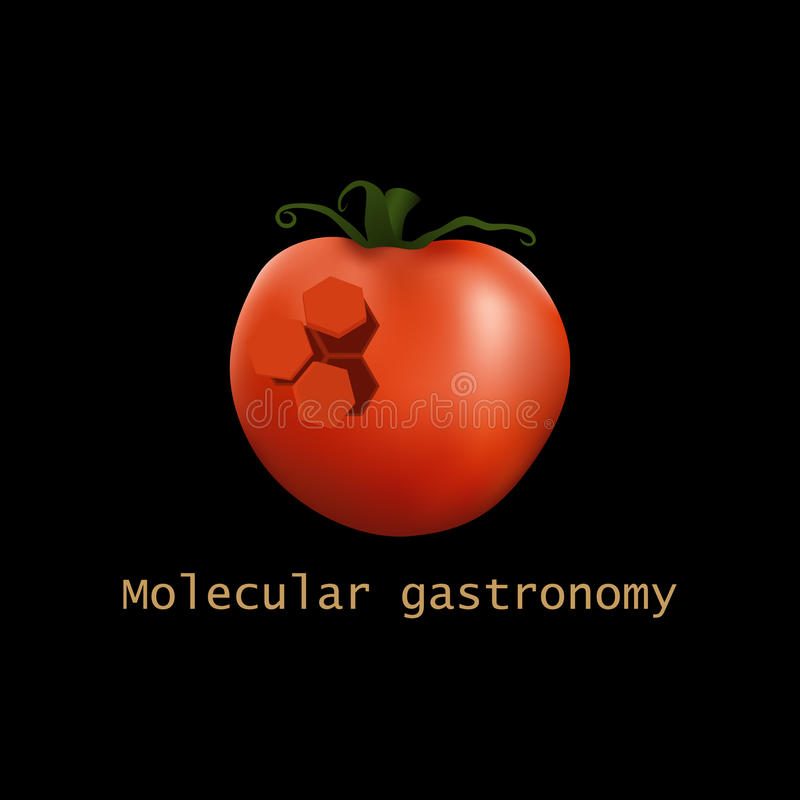 Free Stylized Molecular Tomato Structure. Molecular Gastronomy. Vector Illustration. Stock Image - 70258641