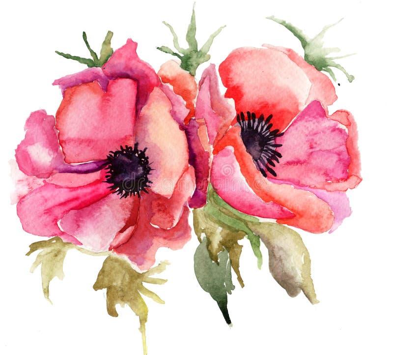 Download Stylized Poppy Flowers Illustration Stock Illustration - Image: 27820749
