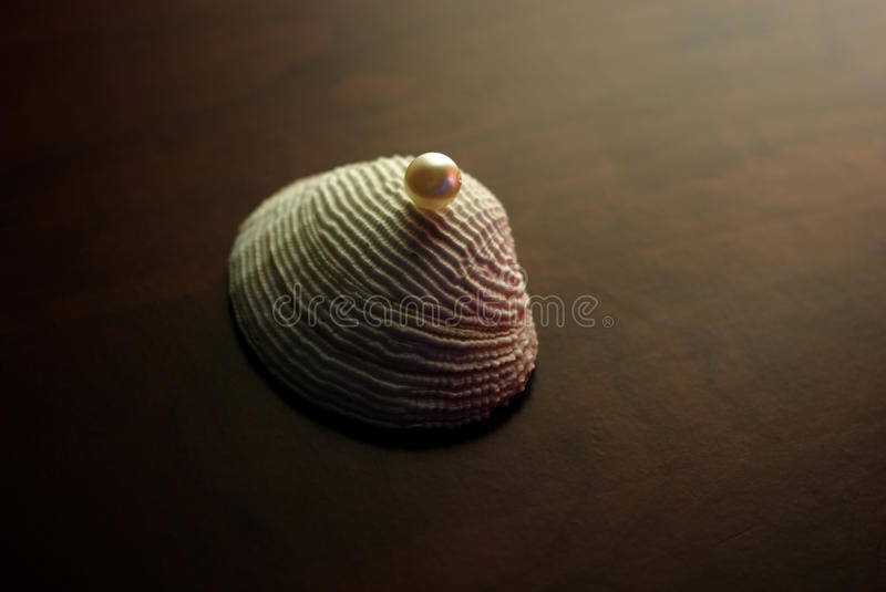 Stylized shell with pearl. Concept - wealth, gift royalty free stock image