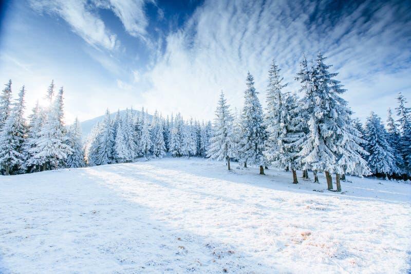 stylized treevinter för illustration snow arkivfoto