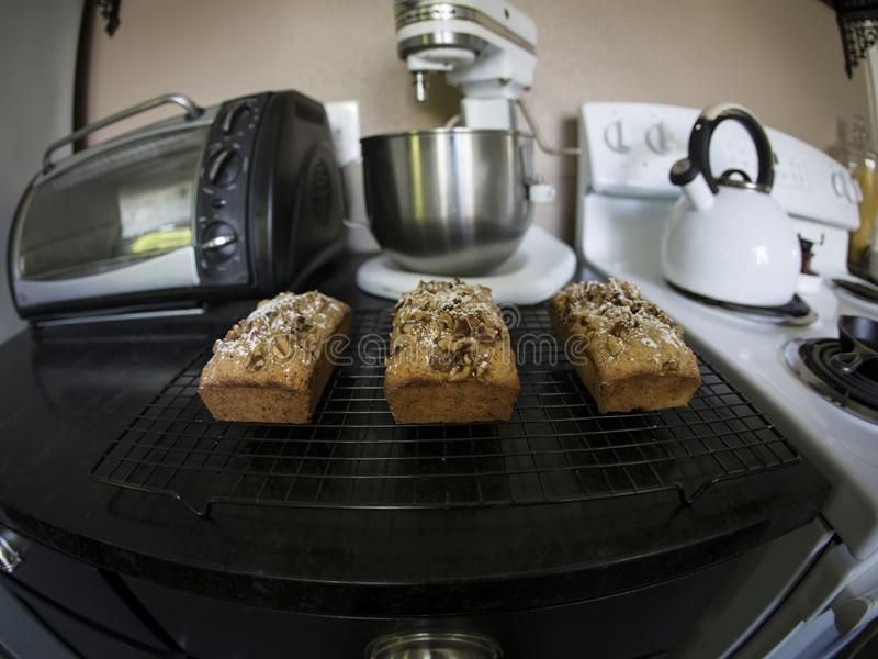 Stylized View of Fresh Baked Loaves of Bread on Wire Cooling Rack, Stove, Teapot, Mixer and Toaster Oven in View royalty free stock photos