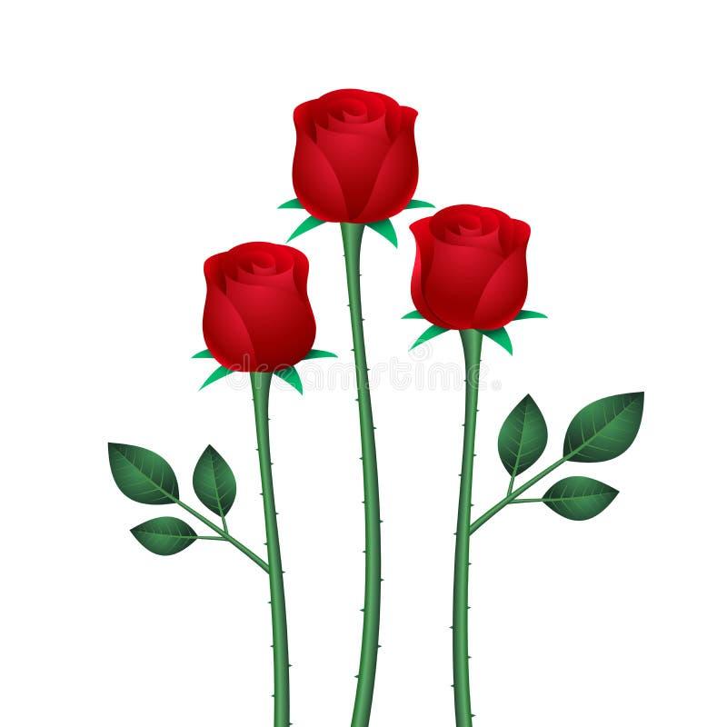 Stylizowana trzy czerwonej róży z liśćmi ilustracja wektor