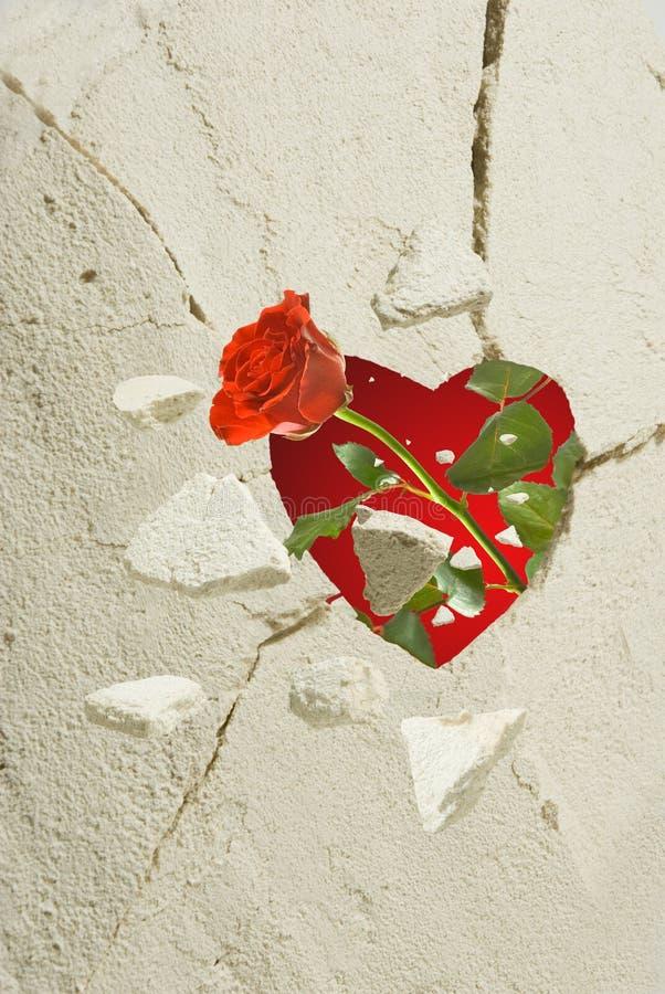 Stylizowany serce w kwiacie i ścianie wzrastał, zdjęcia royalty free