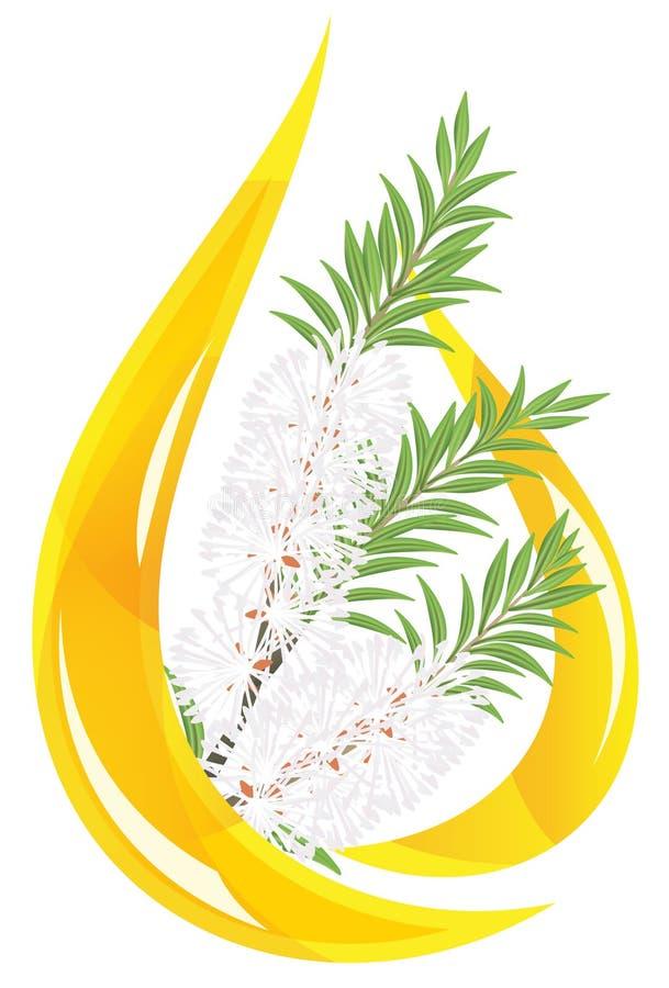 stylizujący melaleuca opadowy istotny olej ilustracji