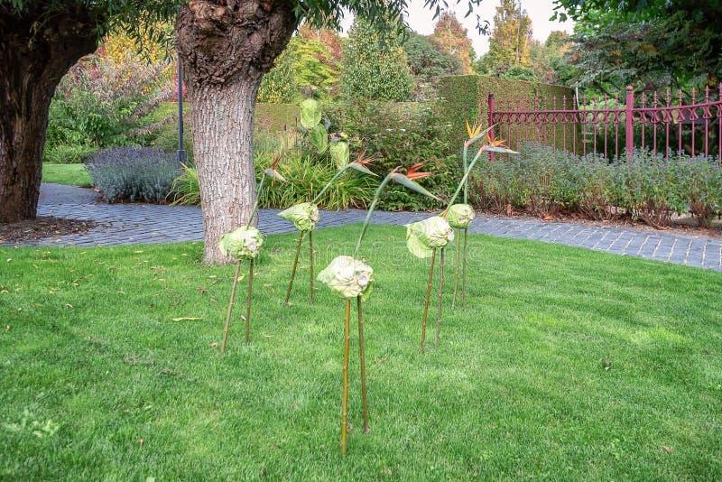 Styltafotgängare som göras av pinnar, en kål och reginae för en Strelitzia royaltyfri foto