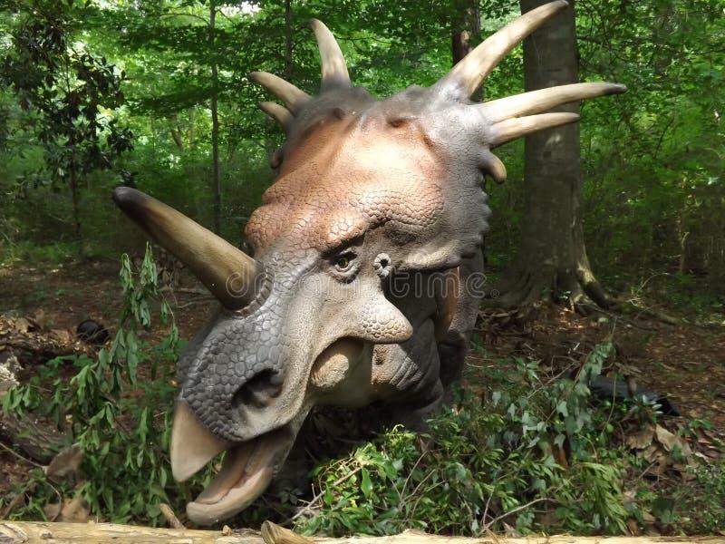 Styracosaurus Dinosaur. Dino taken at display in Birmingham Zoo stock photo