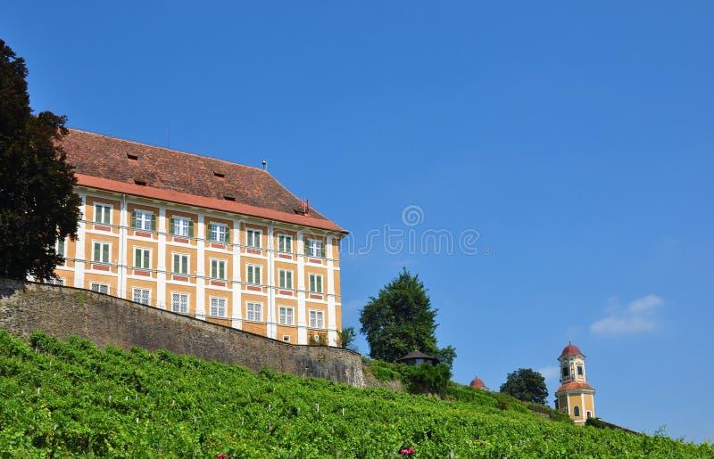 styria för Österrike slottstainz vingård royaltyfri foto