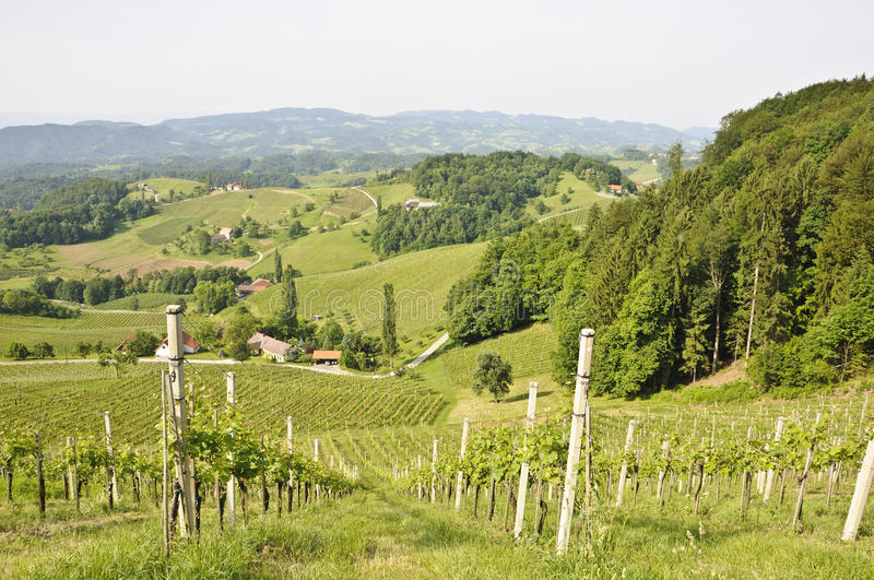 Styria Landscape. A typical landscape in Styria, a federal state of Austria near the border of Slovenia stock image