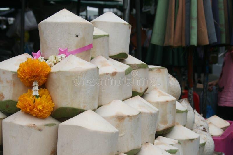 styrninghjul med kokosnötter arkivfoto