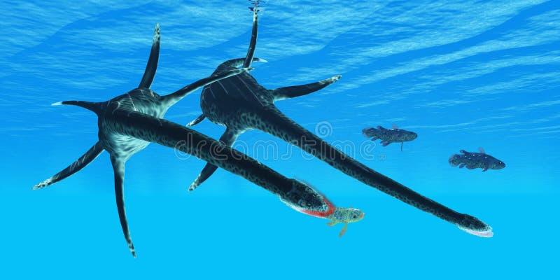 Styxosaurus Reptile hunts Coelacanth Fish stock photography
