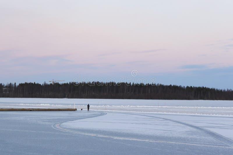 Suécia, manhã do inverno de LuleÃ¥, vista sobre Luleälven imagem de stock royalty free
