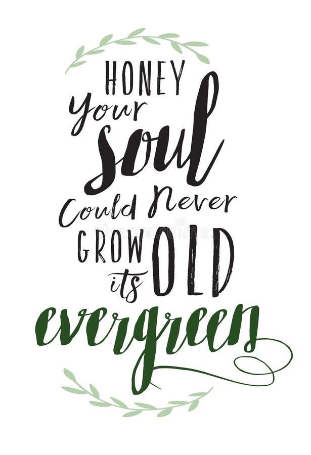 Su alma podía nunca crecer viejo su árbol de hoja perenne libre illustration