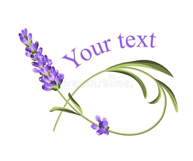 Su plantilla del texto ilustración del vector