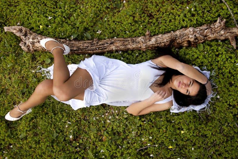 Su un campo verde di bianco puro fotografia stock libera da diritti