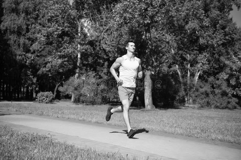 Sua melhor velocidade O basculador do homem corre no fundo da natureza do dia ensolarado do parque Equipe o treinamento, prepare  fotos de stock royalty free