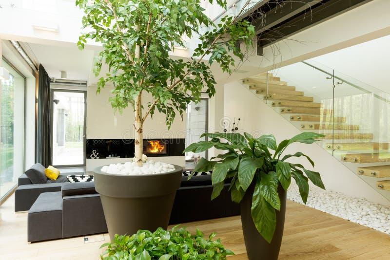 Sua sala de visitas pode igualmente ser seu jardim foto de stock royalty free