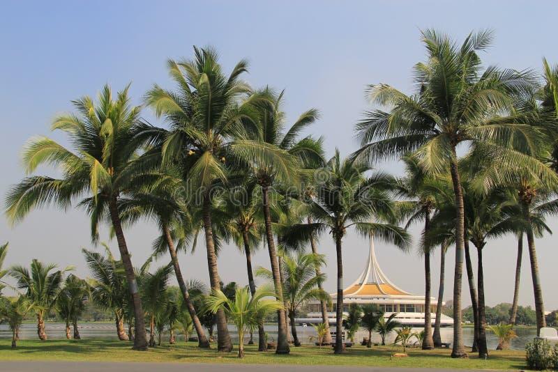 Suanluang Rama IX公园,曼谷,泰国 免版税库存照片