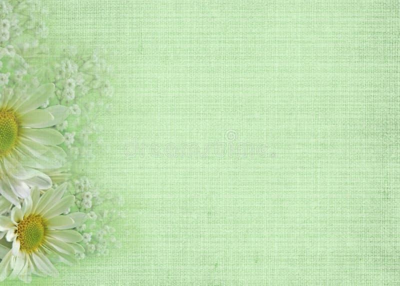 Suavemente verde stock de ilustración