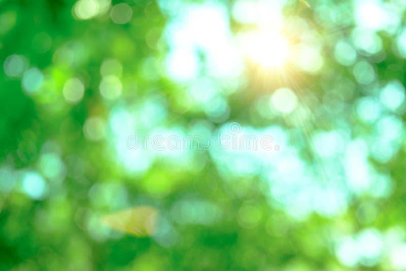 Suavidad borrosa y fondo del bokeh del sol de la iluminación y del leav verde imagen de archivo libre de regalías