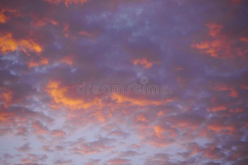 A Brazilian sub tropical skies background royalty free stock image