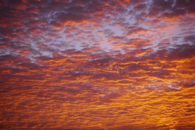 A Brazilian sub tropical skies background royalty free stock photography