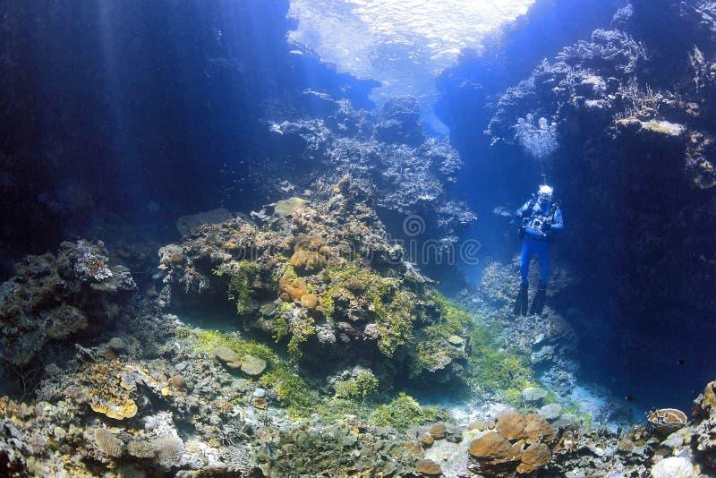 Subaqueo maschio con la macchina fotografica nello swimthrough subacqueo immagine stock