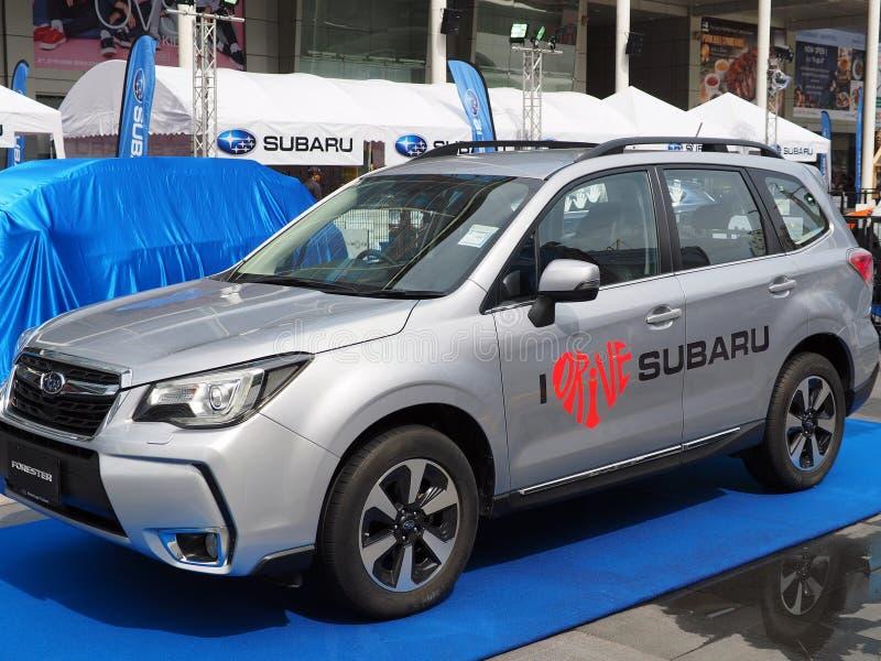Subaru-Förster an Subaru-Palmen-Herausforderung 2018 lizenzfreie stockfotos