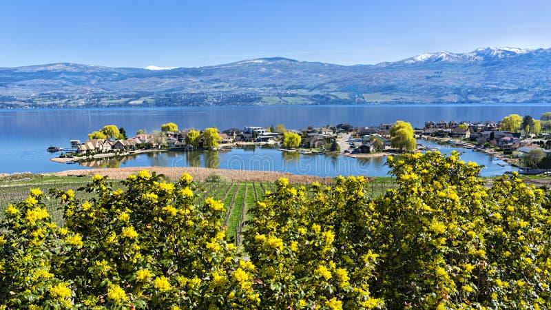 Subdivisión de la orilla del lago en la Columbia Británica del oeste Canadá de Kelowna del lago Okanagan fotos de archivo