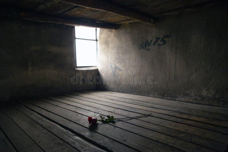 Subió en una cama de la prisión Cama de la prisión en un cuartel en campo de la concentración de Auschwitz - de Birkenau Cuartel  foto de archivo