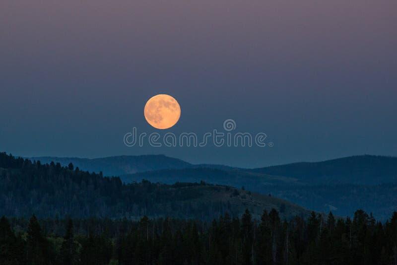 Subida de la luna imágenes de archivo libres de regalías